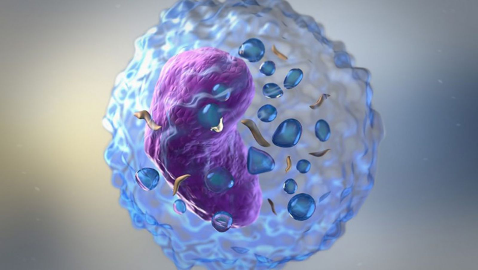 NK CELLS (Cancer killer)